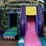 Fantasty World Jumping Castle