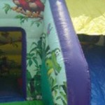 Jungle Fun Jumping Castle